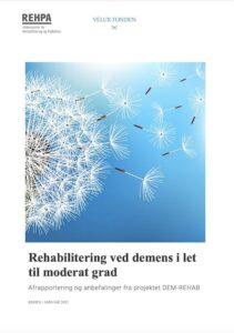 DemRehab rapport